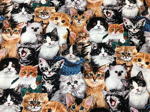 Cotton fabric covered with cats of various breeds and colors.