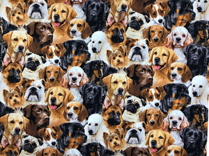 Cotton Fabric covered with dog breeds.
