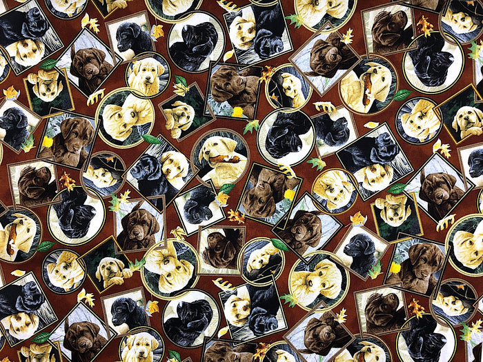 Labrador Dog Fabric - DOG-35