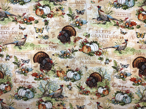 Cotton Fabric covered with turkeys, pumpkins and positive sayings such as autumn blessings and seeds of gratitude.