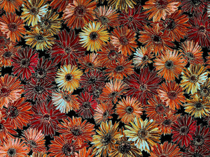 Black cotton fabric covered with Mums in shades of orange and peach.