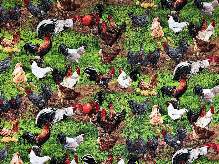 Rooster and Chicken Farm Animal Fabric - FARM-13