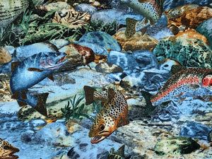 Close up of fish in water amongst rocks and plants.