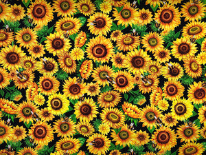Black cotton fabric covered with yellow sunflowers, green leaves and bees.