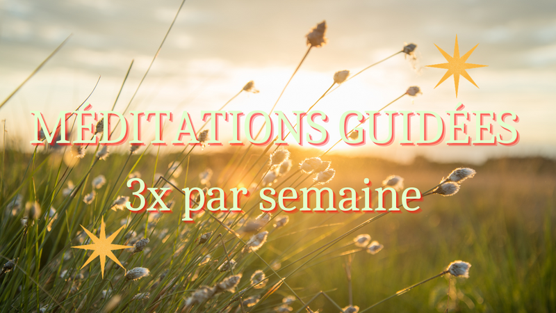 Méditations Guidées en direct 3x par semaine.