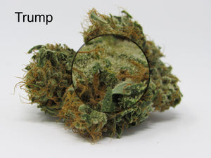 INDOOR PREMIUM HEMP FLOWER - 3.5 grams