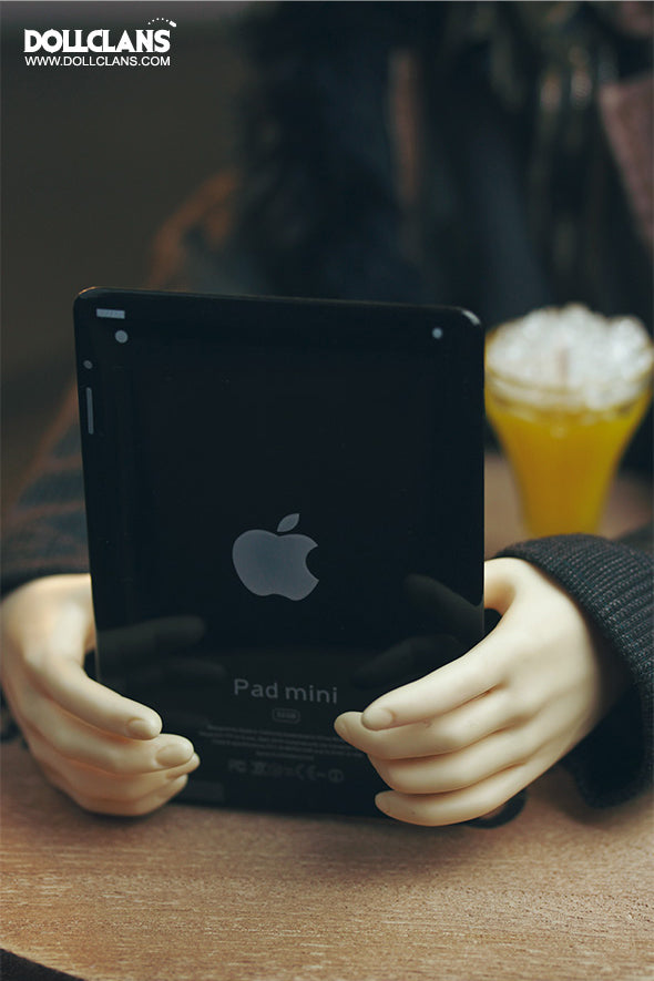iPad (black/white)