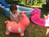 Pink Cow Bouncer