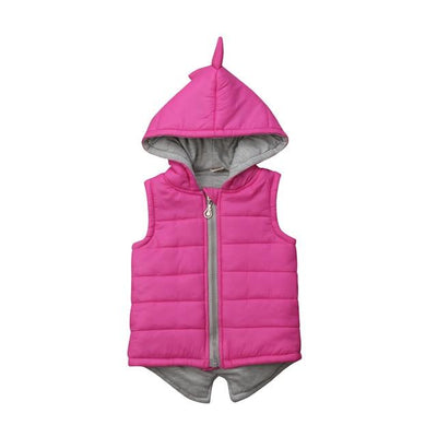 Dinosaur Jacket For Girls