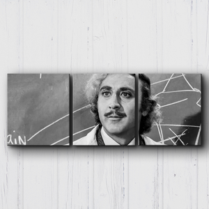 Young Frankenstein Dr. Canvas Sets