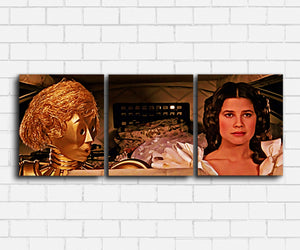 Spaceballs Glad Canvas Sets