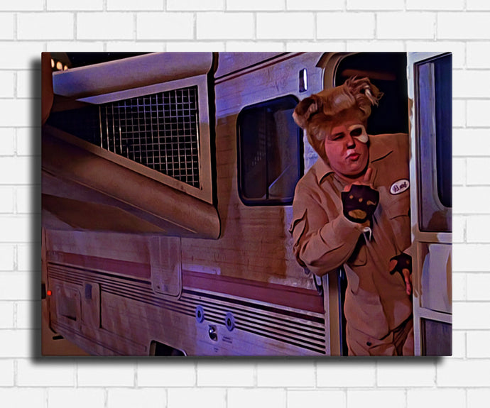 Spaceballs No Parking Canvas Sets