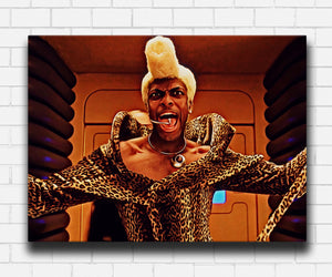 The Fifth Element Ruby Rhod Canvas Sets
