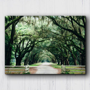 Tallahassee Canopy Canvas Sets