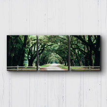 Load image into Gallery viewer, Tallahassee Canopy Canvas Sets