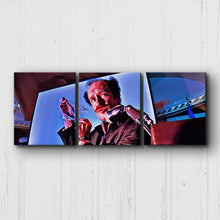 Load image into Gallery viewer, Fear And Loathing A Cockroach Canvas Sets