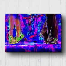 Load image into Gallery viewer, Dirty Dancing Shoes Color Pop Canvas Sets