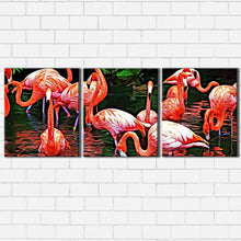 Load image into Gallery viewer, Flamingo Canvas Sets