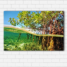 Load image into Gallery viewer, Under the Mangroves Canvas Sets