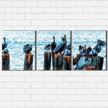 Load image into Gallery viewer, The Pelican Club Canvas Sets