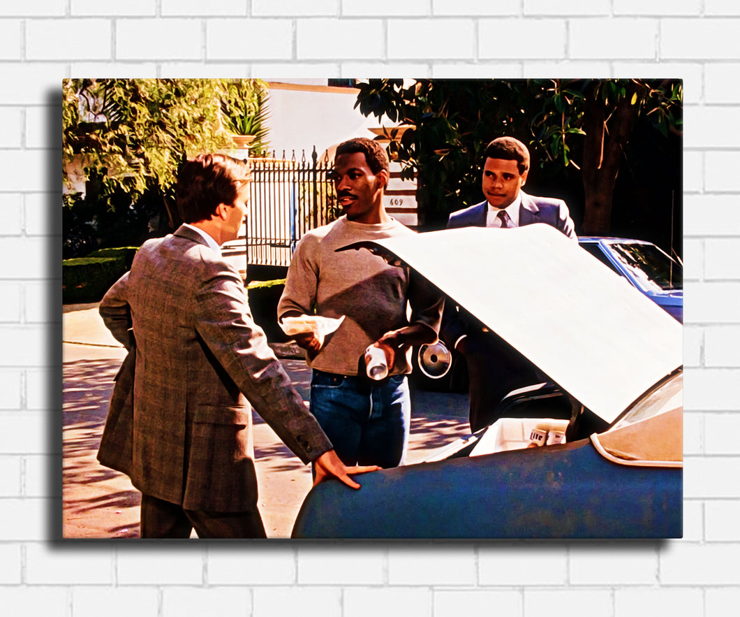 Beverly Hills Cop Picnic Canvas Sets