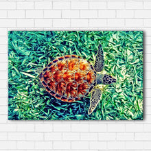 Load image into Gallery viewer, Sideways Sea Turtle Canvas Sets