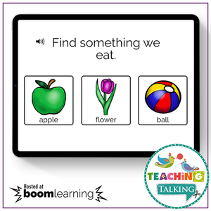 Teaching Talking BOOM Cards BOOM Cards - Understanding Early Nouns by Function