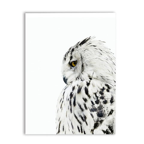 Scandinavian Owl Realistic Painting Canvas