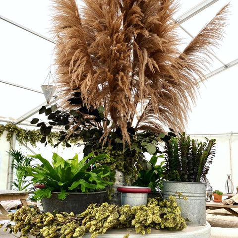 dramatic display of tall pampas as centre piece on table