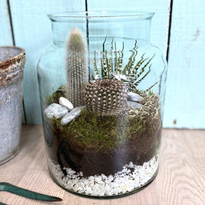 'Howey' Terrarium