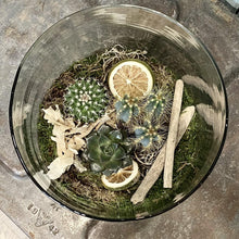 Load image into Gallery viewer, Hattie Terrarium