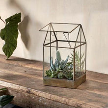 Load image into Gallery viewer, Duke Terrarium - Tall