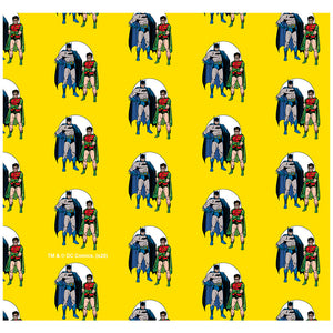 Batman and Robin The Dynamic Duo Pattern