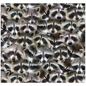 Racoons Adult Mask Design Full View