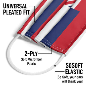 Load image into Gallery viewer, Hawaii Flag Adult Universal Pleated Fit, 2-Ply, SoSoft Elastic Earloops
