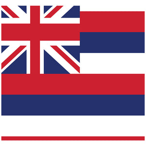 Hawaii Flag Adult Mask Design Full View