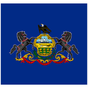 Load image into Gallery viewer, Pennsylvania Flag Adult Mask Design Full View