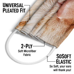 Cat Face Adult Universal Pleated Fit, 2-Ply, SoSoft Elastic Earloops