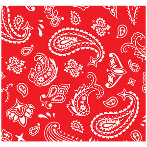 Red Paisley Adult Mask Design Full View