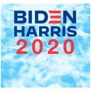 Biden Harris Sky Dye Adult Mask Design Full View