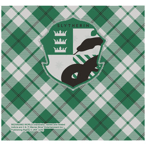 Harry Potter Slytherin Plaid Logo Adult Mask Design Full View