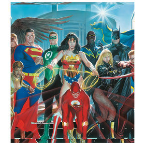 Justice League Alex Ross Painting Kids Mask Design Full View