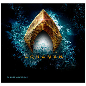 Justice League Movie Aquaman Logo Adult Mask Design Full View