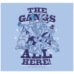 Looney Tunes Blue Gang