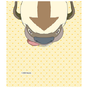 Avatar: The Last Airbender Appa Face Kids Mask Design Full View