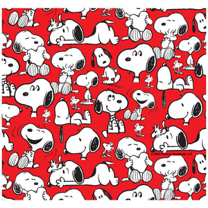 Peanuts Rockin' Red Snoopy and Woodstock Pattern