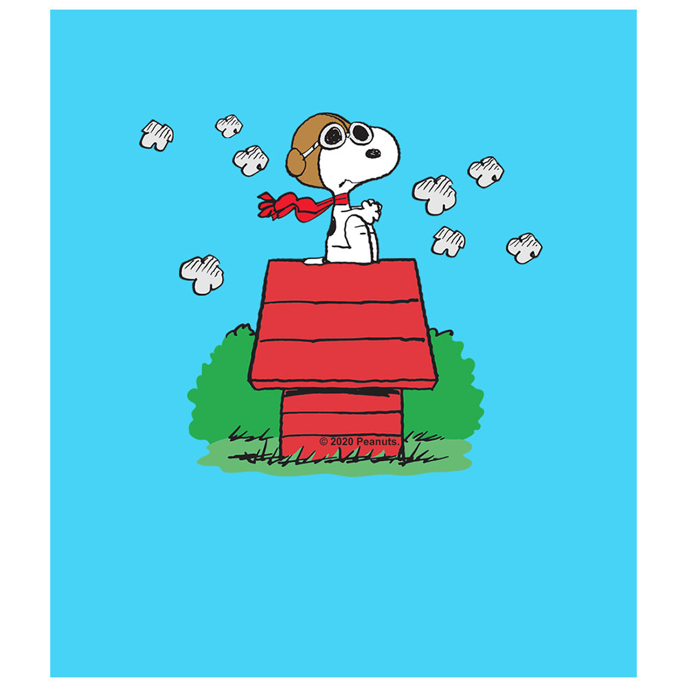 Peanuts Snoopy and the Red Baron