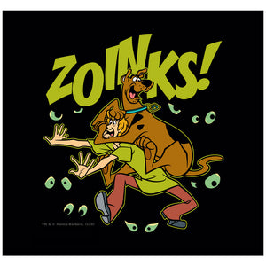 Load image into Gallery viewer, Scooby-Doo Shaggy Zoinks