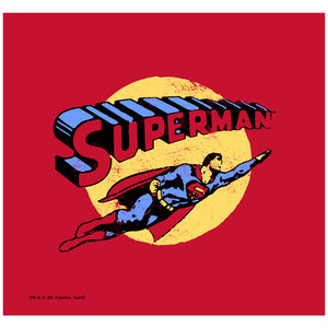 Superman Fly By