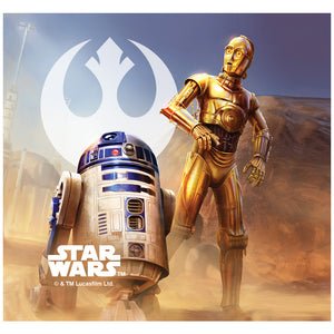 Load image into Gallery viewer, Star Wars R2-D2 and C-3PO Adult Mask Design Full View